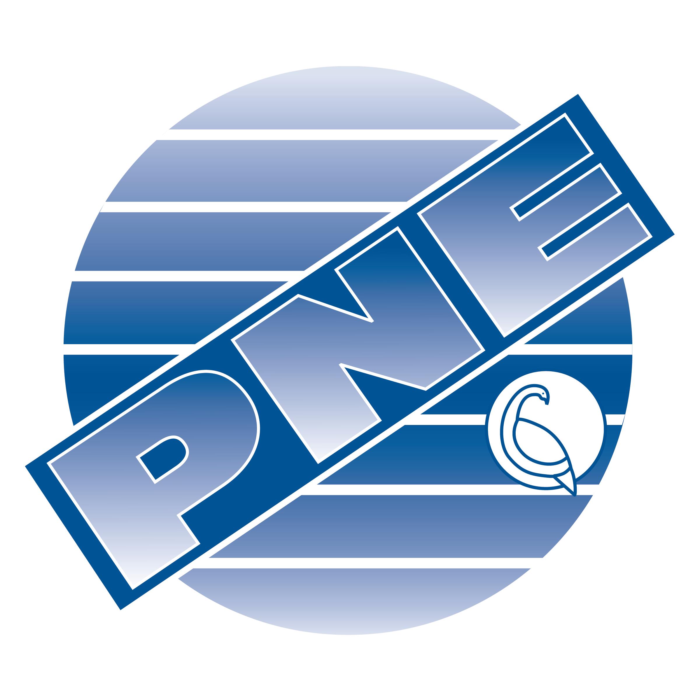 PNE Corporation